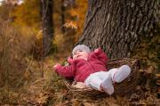 Fülöp Péter: Kosárban az ősz