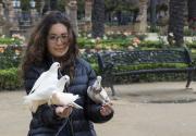 Fekete Tamás : Lány galambokkal