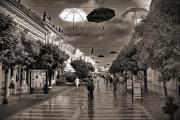 Károlyi Barnabás: Eső után